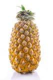 Fresh whole pineapple on a white background. Royalty Free Stock Photo