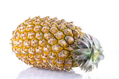 Fresh whole pineapple on a white background. Fresh whole pineapple. Isolated on a white background Stock Photography