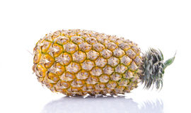 Fresh whole pineapple on a white background. Stock Images