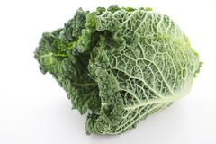 Fresh whole savoy cabbage Royalty Free Stock Photography