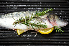 Fish on a bbq. Whole sea-bass fish with aromatic herbs and lemon on a bbq grill, black background, closeup royalty free stock images