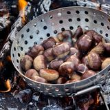 Fresh whole sweet chestnuts in a metal roaster. Fresh whole sweet chestnuts in their shells in a metal roaster over hot coals on a barbecue fire in a close up stock photo
