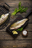 Fresh whole trout fishes prepared to grill. Top view Stock Images