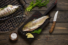 Fresh whole trout fishes prepared to grill. Top view Royalty Free Stock Photo