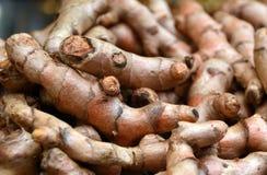 Fresh Whole Tumeric Roots, or Rhizomes. Detailed closeup of fresh, whole tumeric roots or rhizomes for sale at Jerusalem Mahane Yehuda market, for use in Middle Stock Photo