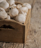 Fresh whole white button mushrooms Royalty Free Stock Images