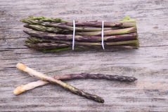 Fresh wild asparagus (Asparagus acutifolius) Stock Photography