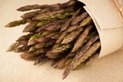Fresh wild asparagus ready to be cooked Royalty Free Stock Image