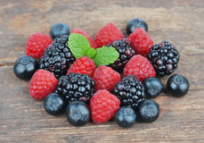 Fresh wild berries Royalty Free Stock Image