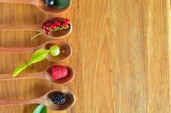 Fresh wild berries Royalty Free Stock Photo