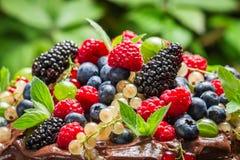 Fresh wild berry fruits. Closeup of Fresh wild berry fruits Royalty Free Stock Photos