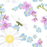 Fresh wild field flowers mix seamless pattern. Fresh wild field flowers mix. Daisy chamomile, blue forget-me-not, purple violet viola bloom blossom. Spring Stock Photography