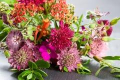 Fresh wild flowers Royalty Free Stock Image