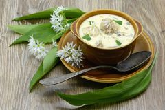 Fresh wild garlic ramson soap with leaves and meat balls. Antique spoon aside Royalty Free Stock Images