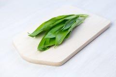 Fresh wild garlic Stock Images