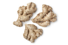 Fresh wild ginger roots. On white background Royalty Free Stock Photo