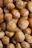 Fresh wild Hazelnuts full frame Royalty Free Stock Image