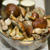 Fresh wild mushrooms. From forest in kitchen Stock Images