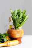 Fresh wild onion leaves in mortar and pestle Stock Photo