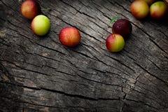 Fresh wild plum Royalty Free Stock Photos
