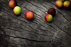 Fresh wild plum. Fruit garden concept. Freshly harvested wild plum on old wooden background royalty free stock photos