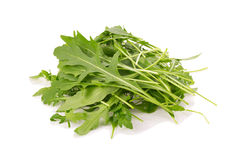 fresh wild rocket rucola leaves on white background Royalty Free Stock Image