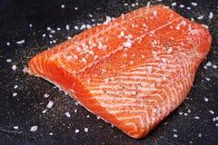 Fresh Wild Salmon. On Grey Stone Background Stock Photography
