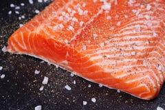 Fresh Wild Salmon. On Grey Stone Background Royalty Free Stock Photography