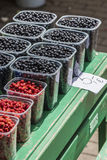 Fresh wild strawberries and blueberries at retail store Stock Photography