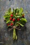Fresh Wild strawberries on wooden background Royalty Free Stock Photos