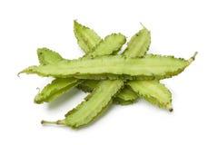 Fresh Winged beans Stock Photo