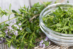 Fresh Winter Savory in a bowl Royalty Free Stock Photo