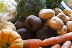 Fresh Winter Vegetables Royalty Free Stock Photos
