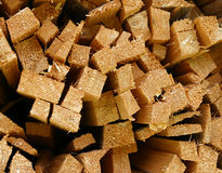 Fresh wood chips. (abstract pattern Stock Image