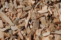 Fresh wooden chips Stock Image