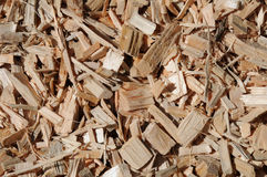 Fresh wooden chips Royalty Free Stock Photo