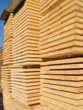 Fresh wooden studs Royalty Free Stock Photo
