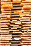 Fresh wooden studs Stock Images