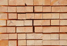 Fresh wooden studs Royalty Free Stock Photography