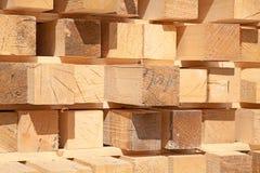 Fresh wooden studs Stock Image