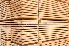 Fresh wooden studs Royalty Free Stock Image