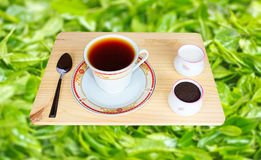 Fresh World-Renowned Ceylon Black Tea Royalty Free Stock Photo