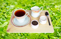 Fresh World-Renowned Ceylon Black Tea Royalty Free Stock Photos