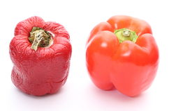 Fresh and wrinkled peppers on white background Stock Image