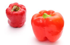 Fresh and wrinkled peppers on white background Royalty Free Stock Images
