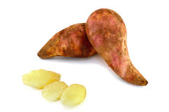 Fresh Yacon roots fruit isolate on white background. Fresh Yacon roots on white background Stock Photography