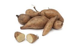 Fresh Yacon roots Stock Photography