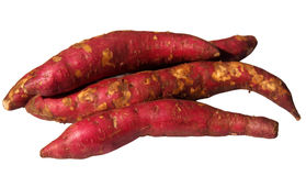 Fresh yams Royalty Free Stock Photo