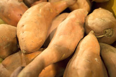 Fresh yams at the market Stock Image