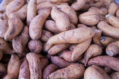 Fresh yams at market Stock Images